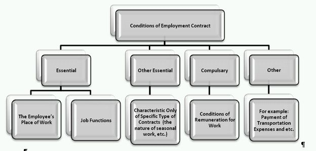Employment Contract Types And Terms And Conditions Permitted By