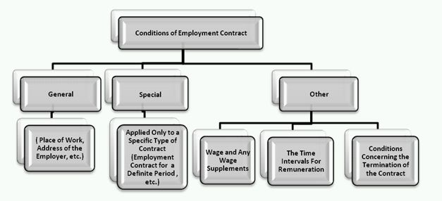 Employment Contract Types And Terms And Conditions Permitted By Law