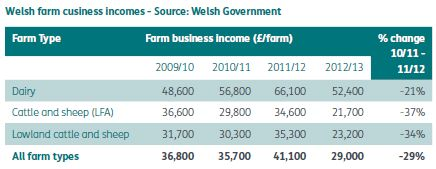 Welsh government single farm payment